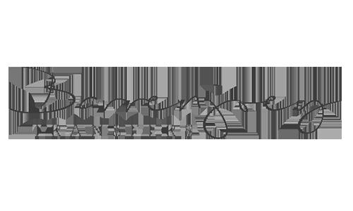 Barren Joey Transfers